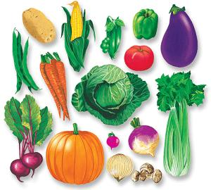 vitamins and minerals overview